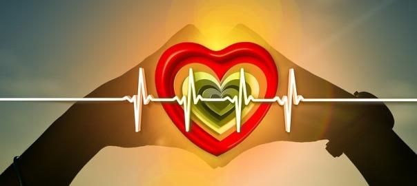 seguro de salud para compraventas profesionales de vehículos